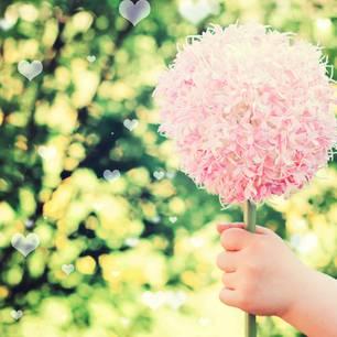 Geschenke Blumengr E Fair Ist Sch Ner
