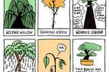 Die Angst-Bäume (von links oben): die weinende Weide, die zitternde Espe, der sorgende Mammutbaum, die schwitzende Palme, der maue Spross, der Bonsai, der nach außen ruhig wirkt, aber innerlich bebt.