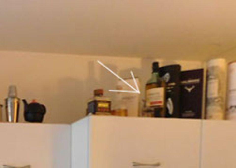 Bilderrätsel: Wer findet die Katze auf diesem Foto?