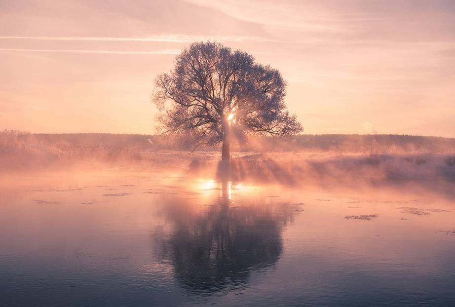 Wunderschön: Nebel, Dunst, Eis - und das Ganze durchbrochen von bersteinfarbenen Sonnenstrahlen, die den Tag wachküssen! Was Alex Ugalnikov aus seiner Kamera rausholt, wenn der Morgen in Weißrussland anbricht, ist einfach sagenhaft! Klick dich jetzt durch die Bilder - jedes einzelne beeindruckt uns aufs Neue.