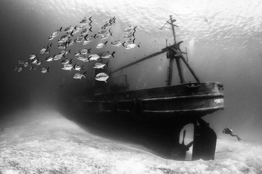 """USS Kittiwake shipwreck"""