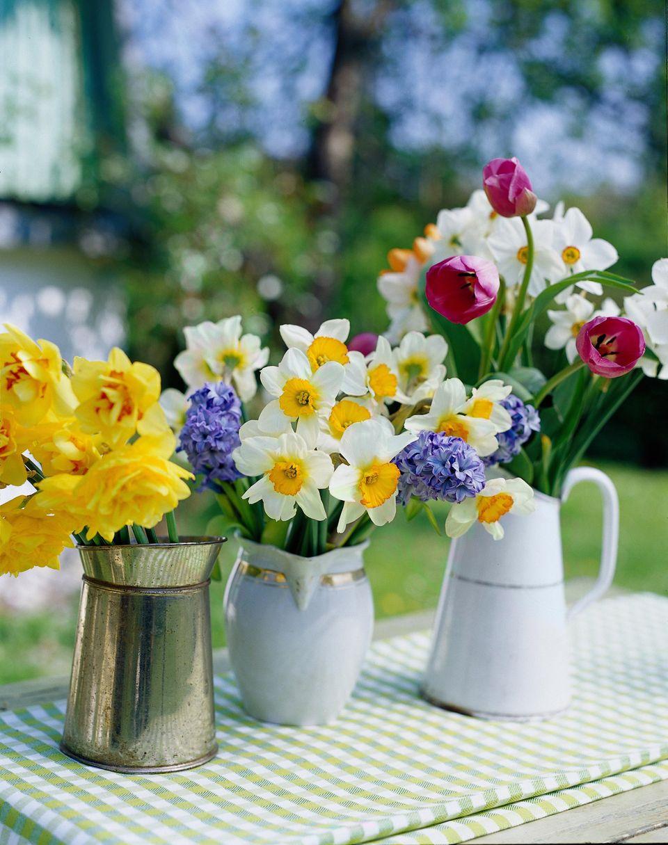 Frühlingsboten für die Osterdeko