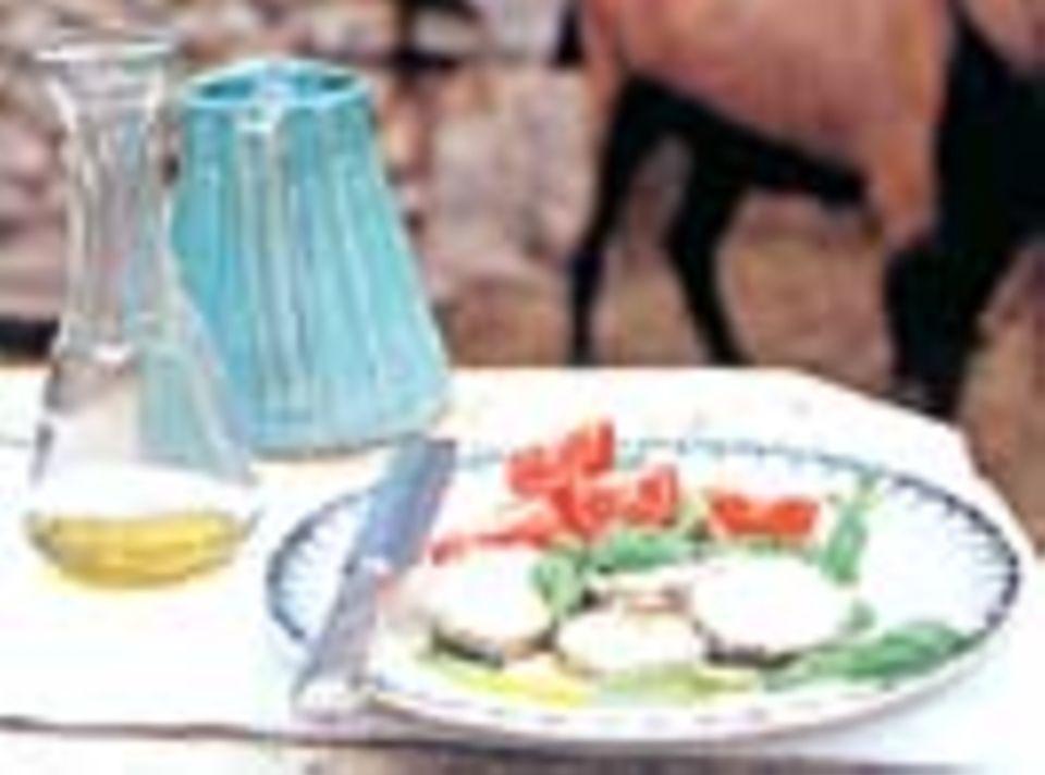 Ziegenkäse mit Tomaten, Basilikum, und  weißem Balsamessig - wunderbar!