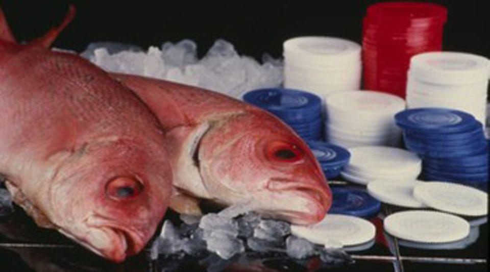 Makaberes Mafiaritual: Findet man einen toten Fisch im eigenen Haus, sollte man sich von seinen Lieben verabschieden. Denn bald wird man da sein, wo die Fische normalerweise sind: Unter Wasser.