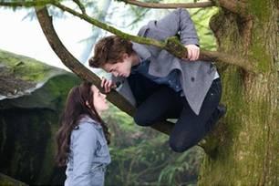 Bella ist von dem geheimnisvollen und attraktiven Edward fasziniert