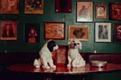 Die Fifi-Bar ist ein Kölner Original