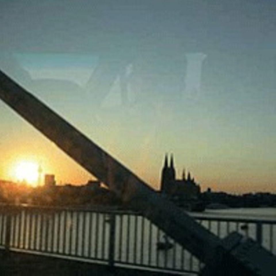 Klee kommen heim nach Köln. Ein Stadtpanorama aus dem Tourbus.