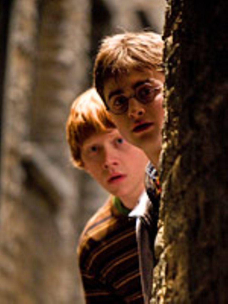 Ron (Rupert Grint) und Harry (Daniel Radcliffe) beschatten Malfoy
