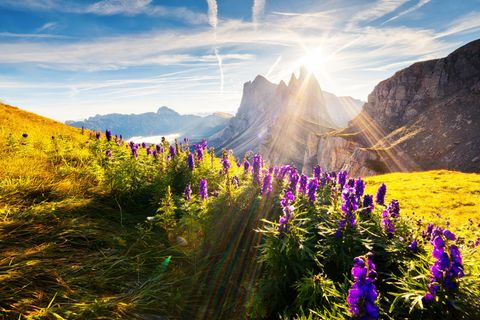 Südtirol ist für alle da! Die schönsten Tipps für euren nächsten Urlaub
