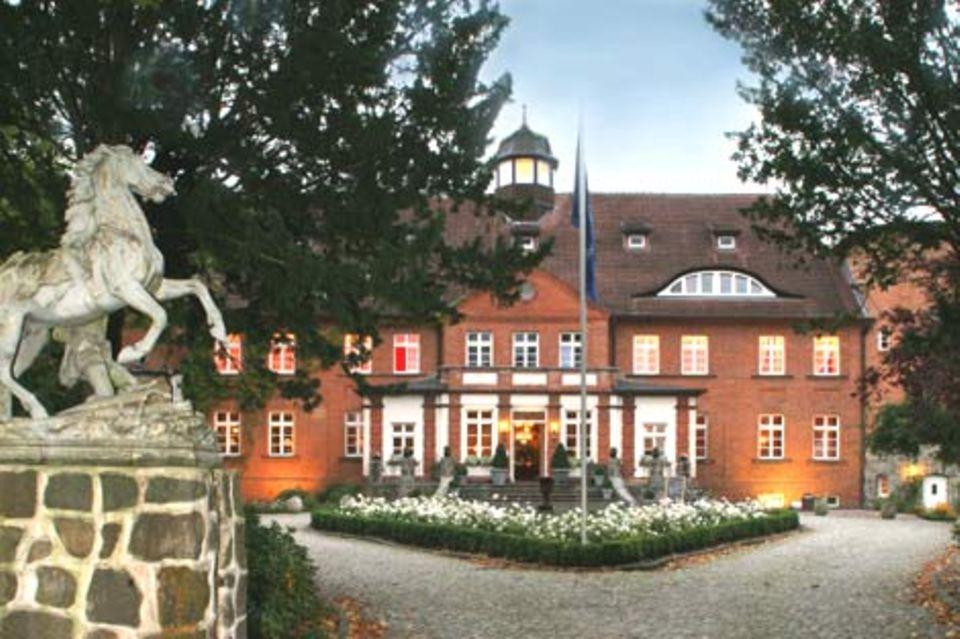 Hinterm Herrenhaus erstreckt sich ein wunderschöner Park mit uralten, knorrigen Bäumen - dahinter kommen nur noch Wälder ...