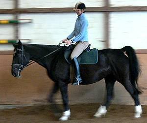 Pferdesport: Typische Anfängerfehler: Die Zügel sind zu lang, die Absätze zu hoch.