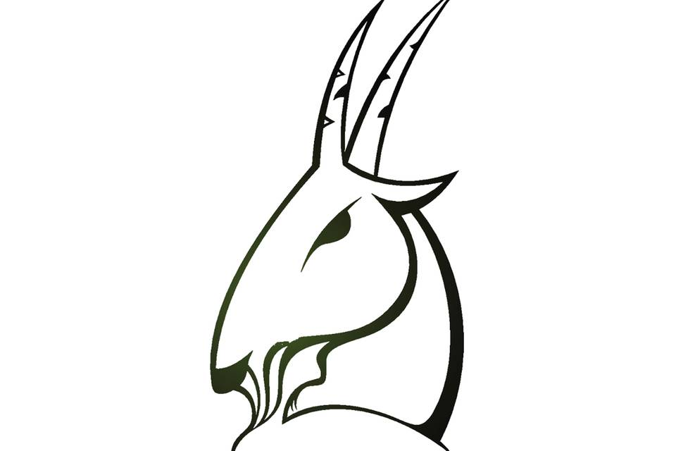 Sternzeichen Steinbock: Der Gipfelstürmer