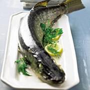 Ein Hoch auf frischen Fisch