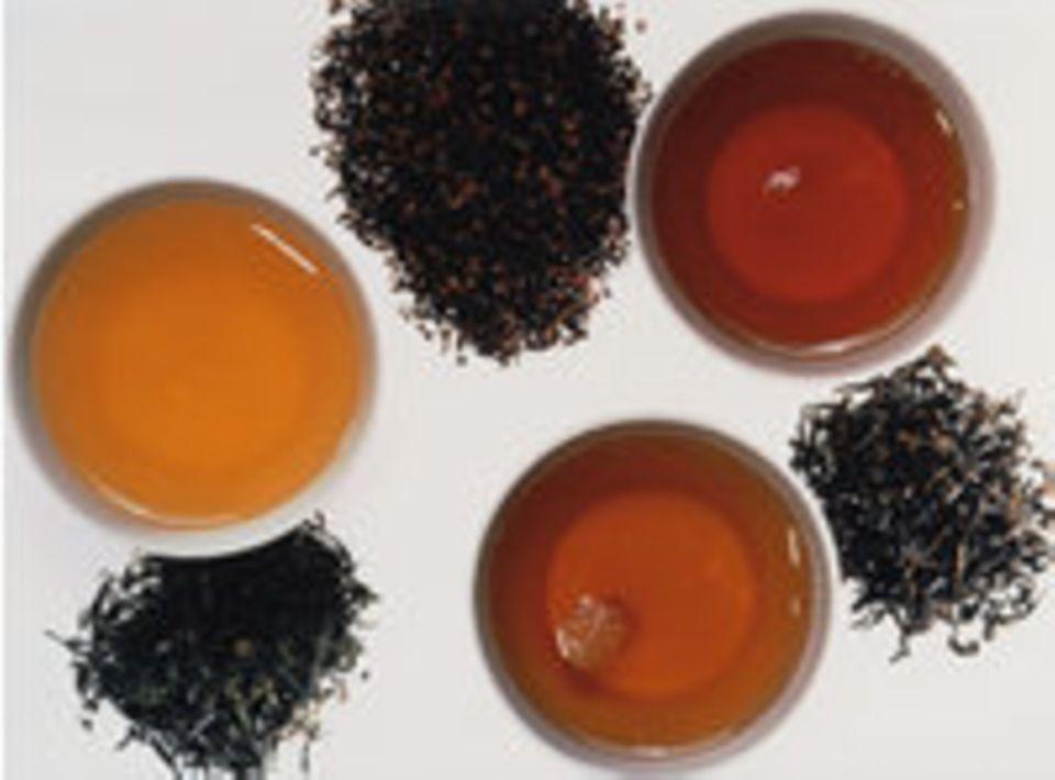 Tee testen: Der feine Unterschied