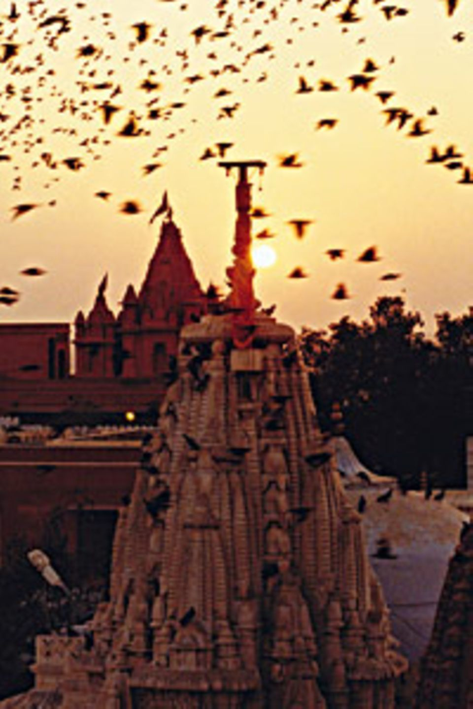 Friedlicher Ausklang des Tages wie hier am Tempel von Bikaner