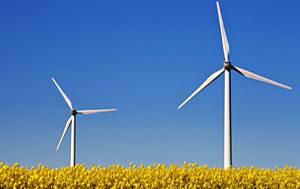 Erneuerbare Energien: Ökostrom: So wechseln Sie den Anbieter