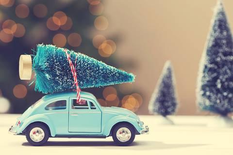 Weihnachtsbaum mieten? Super Idee!