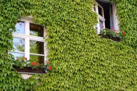 Heizen und Energiesparen: So wohnen Sie klimafreundlich