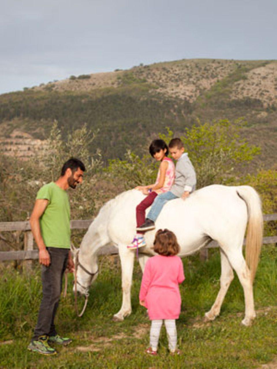 Die schwangere Araberstute Gira trägt die Kinder spazieren