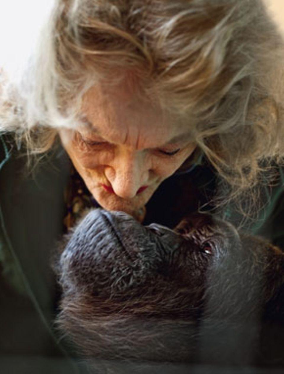 Zwei Damen, die sich innig lieben: Pat und Kalu, die Schimpansin. Gerahmtes zeugt von verblichener Schönheit und den Lieben von einst (links)