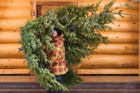 Diese Strategien helfen gegen Stress vor Weihnachten