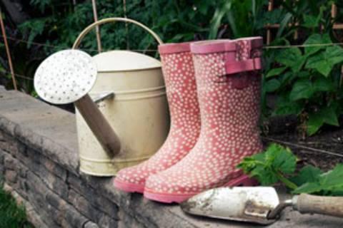 Gartentipps: Grundwissen für Grünlinge