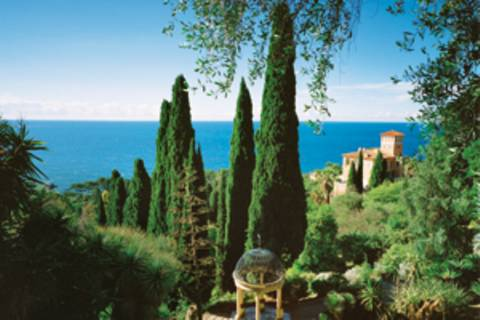 Zum Aufblühen an die Riviera