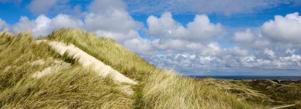 Mein Lieblingsplatz liegt in Dänemark zwischen Ringkøbing-Fjord und Nordsee etwas südlich von Hvide Sande. Es ist eine hohe Düne, die zwischen den Wassern in einer wunderschönen Dünenlandschaft liegt. Ein absoluter Kraftplatz für mich.