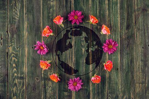 Globus auf Holz gezeichnet und von Blumen umgeben