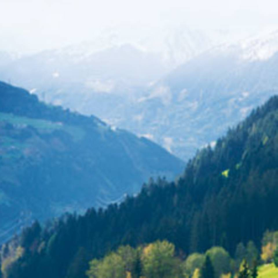 Urlaub auf der Alm: Warum sich Schuften auszahlt