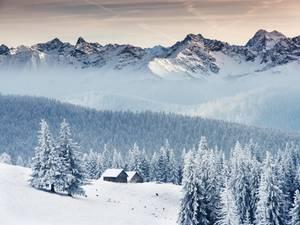 Reisetipps: Winterfreuden: Jetzt noch schnell den Winter genießen!