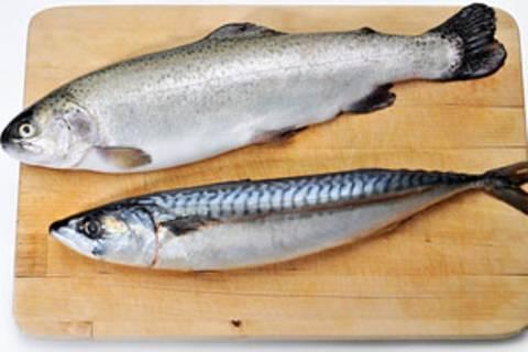 Welchen Fisch kann man noch kaufen?