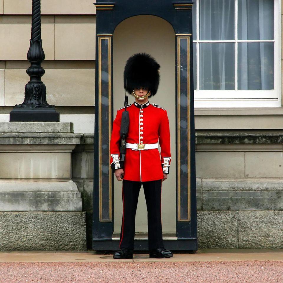 Das passiert, wenn du eine Royal Guard antippst