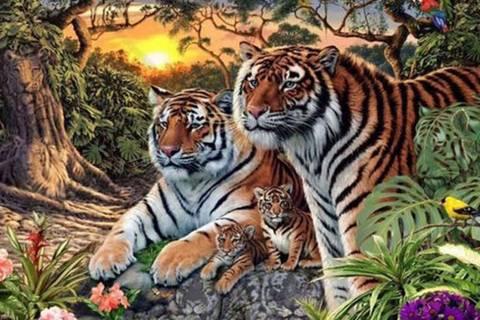 Könnt ihr alle Tiger auf diesem Suchbild finden?
