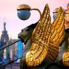 0.30 Uhr früh: Greifen im Dauereinsatz. Die Fabelwesen mit den goldenen Flügeln halten die Eisenseile der prachtvollen Bankbrücke, die sich über den Gribojedow-Kanal spannt.