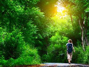 Urlaub auf dem Land: 50 Ideen und Adressen