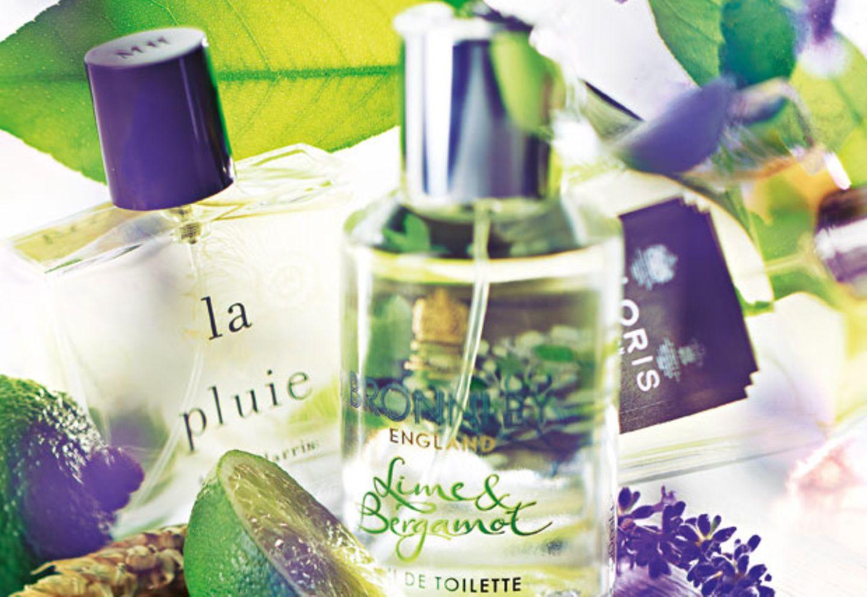 Parfüm aus England - her mit den duften Briten