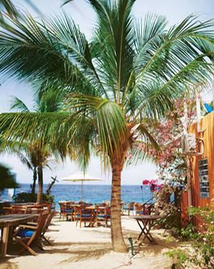 """Curaçao: Palmen und Meer gibt""""s in der """"Scuba Lodge"""" als Zugabe zum Frühstück"""