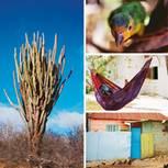 Curaçao: Ferien wie ein Cocktail