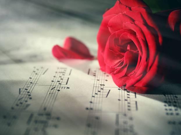 Die schonsten lieder fur die kirchliche trauung