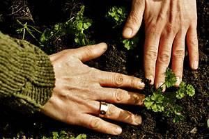 Handpflege: Warum unsere Hände ganz besonders sind