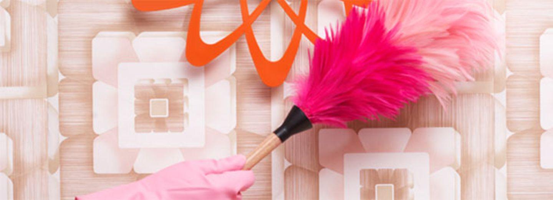 Staubwischen für Anfänger - schnell & einfach sauber