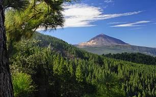 Kurztrips: Majestätisch: der Teide, Spaniens höchster Berg