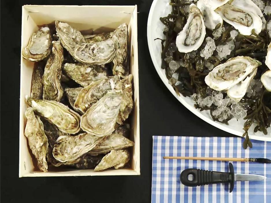 Video-Kochschule: Austern öffnen
