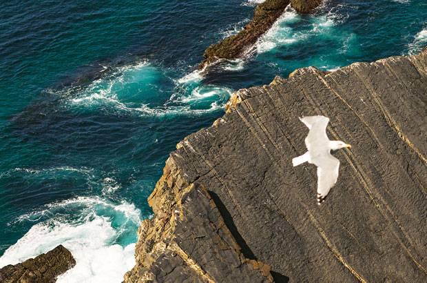Auftrieb: Den Möwen verleiht die Thermik Flügel, den Wanderern der Blick aufs Meer. Mal schäumt und sprudelt das Wasser, mal ist es so still, dass man aus 60 Metern bis auf den Grund sehen kann.