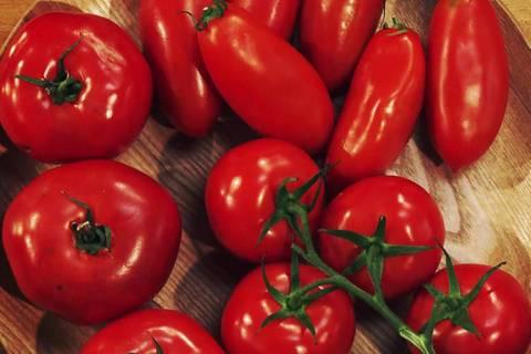 Tomaten aushöhlen – so geht's