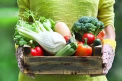3 einfache Ernährungsregeln