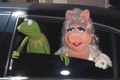 Oh nein: Kermit und Miss Piggy geben Ende ihrer Liebe bekannt