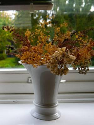 """In der Fensterbank stehen noch immer die Blumen aus dem Garten, die Susanne ihm zum Einzug geschenkt hat. """"Freunde sagen, schmeiß sie weg, aber ich finde sie schön. Sie sind mir wichtig"""", sagt Anas."""