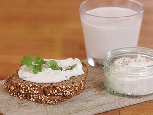 Nussmilch und Nusskäse: Milch-Ersatz selber machen